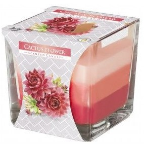 detail Bispol 180g cactus flower 6ks
